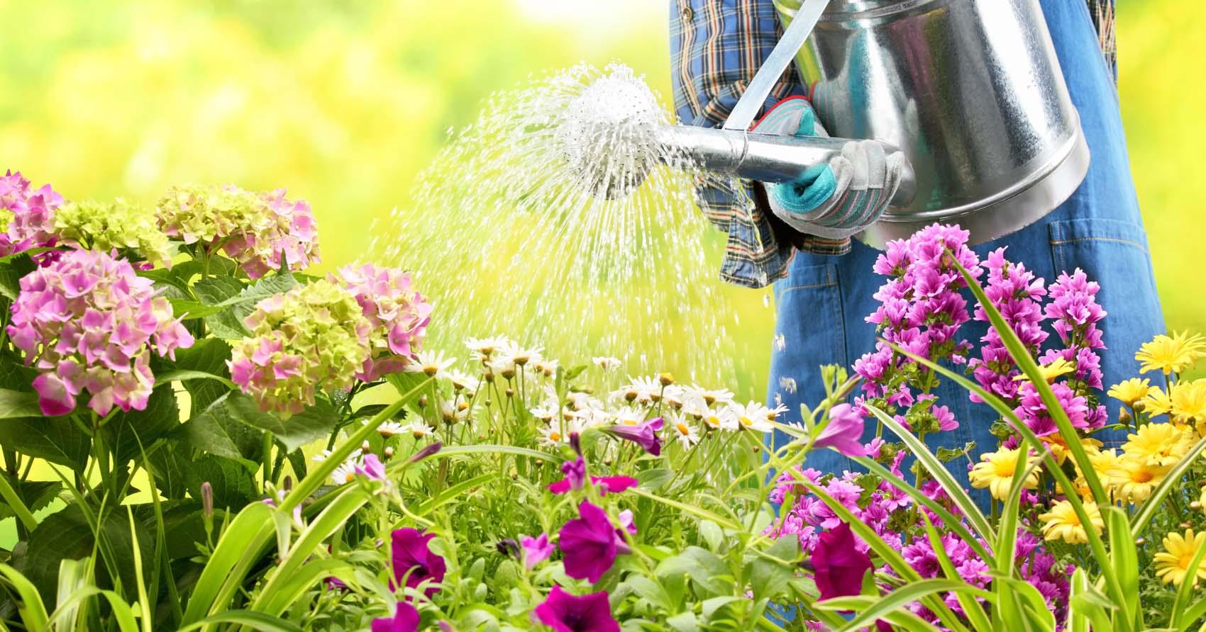 Watering Garden Lincoln NE